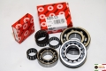 Motor Bearings for  LI - SX - Special